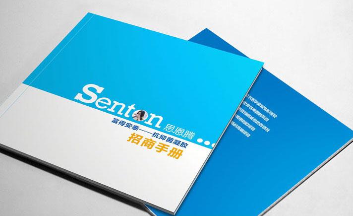 招商手册设计-深圳龙岗画册设计印刷公司